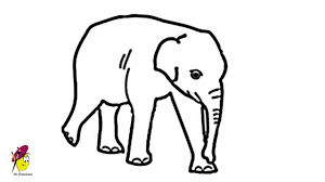 Baby Elephant Drawings Baby Elephant Easy Drawing How To Draw An Elephant Baby
