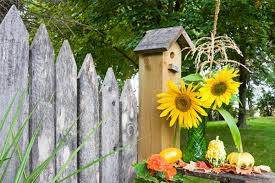 fall garden flowers. Planting A Few Of These Fall Flowers In Your Garden Will Keep The Color Going Strong I