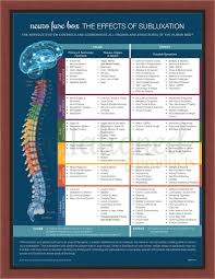 Chiropractic Subluxation Chart Neuro Fuse Poster 24x36