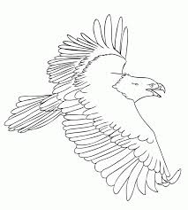Small Picture Free Eagle Coloring Pages Coloring Home