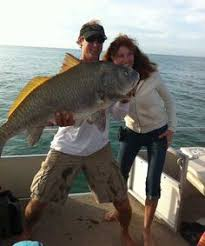 11 Best Fresh Catch Images Fish Naples Fishing Report