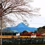 imagem de Agudo Rio Grande do Sul n-16