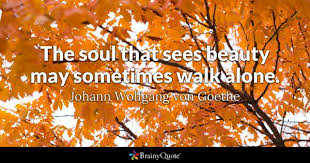 Goethe Quotes Stunning Johann Wolfgang Von Goethe Quotes BrainyQuote