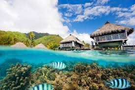 real underwater hotel. Underwater Hotel Room. Sleeping With The Fishes: World\\u0027s Best Hotels Real W
