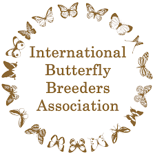 International butterfly breeders ass