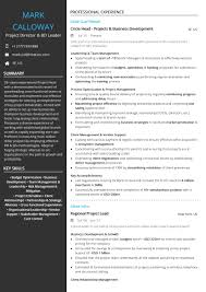 Resume Project Management Resume Examples And Samples Director