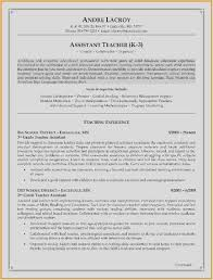 Free 59 Resume Template Free Picture Free Download Template Example