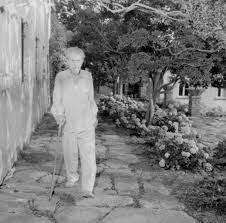 ezra pound american poet and poser pictured in the garden of his villa at