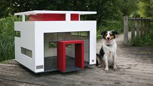 Creative Dog Houses Cool Dog House Plans Pictures 3d House Designs Veerleus