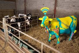 Resultado de imagen para internet de las vacas