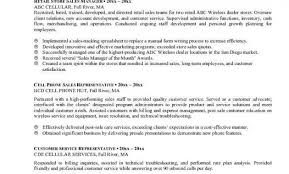 Executive Resume Summary Statement Examples Summary For A Resume