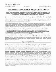 Renovation Project Management Template Beautiful Construction