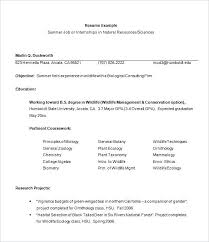 Resume Outline Sample Examples For College Students With No