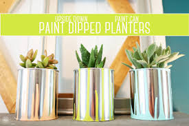 Diy Planters Diy Paint Dipped Paint Can Planters