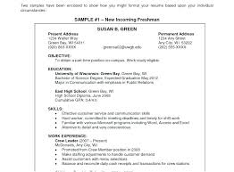 Example Of Objective For A Resume Example Resume Objective ...