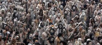 a harvard professor believes megacities can learn from the kumbh mela what a harvard professor believes megacities can learn from the kumbh mela