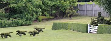 the classic view of the topiary horses riders and dogs at ladew topiary garden in