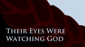 their eyes were watching god by zora neal hurston second recap acirc reg  their eyes were watching god