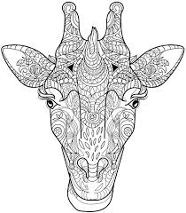 Small Picture Coloring Pages Adults Animals Coloring Pages