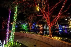 Miami Christmas Lights Tour Things To Do For Christmas In Miami