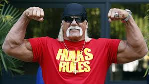 Image result for hulk hogan