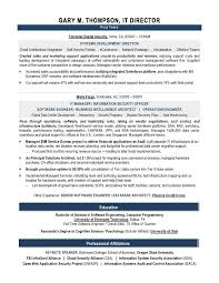 It Director Sample Resume It Resume Writer Technical Resume