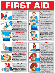 Free Printable Cpr Chart Printable Cpr Instruction Card