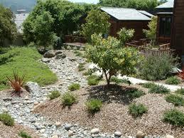 gallery z dry creek beds