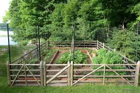 how to keep deer away from garden. this is an example of a traditional vegetable garden landscape in new york. how to keep deer away from