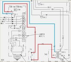 american standard wiring diagram davehaynes me fender american standard wiring diagram american standard wiring diagram preclinical