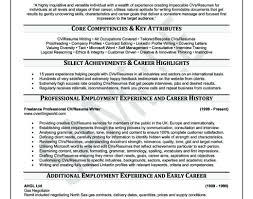 Professional Resume Help Excellent Professional Resume Services