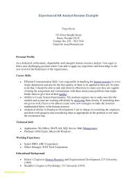 Resume With No Job Experience Inspirational Resume For College