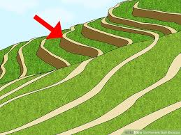 how to prevent soil erosion steps pictures wikihow image titled prevent soil erosion step 15