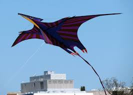 essay on kite flying plight of the kites before i forget biography  plight of the kites before i forget pterodactyl kite