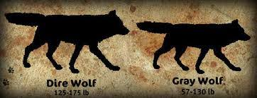 grey wolf size canis lupus the grey wolves of then and now owlcation