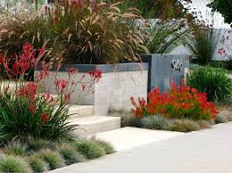 an elegant front garden debora carl