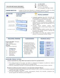 Good Resume Format Magnificent World's Best Resume Format
