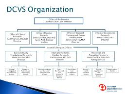 Pearson Organizational Chart Index Of Files Images Org Chart