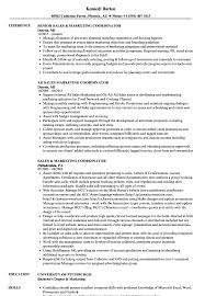 Sales And Marketing Resume Examples Sales Marketing Coordinator Resume Samples Velvet Jobs 9