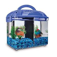 petco betta fish tanks. Wonderful Tanks Imagitarium Betta Fish Dual Habitat Tank In Blue To Petco Tanks
