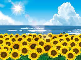 黄色の花 Gahag 著作権フリー写真イラスト素材集
