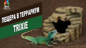 <b>Trixie</b> пещера в террариум | Обзор пещера в террариум | Cave in ...