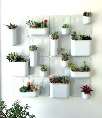 indoor wall garden. Indoor Wall Herb Garden Full Image For Just Saw This .