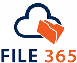 edit microsoft 365 files in sforce