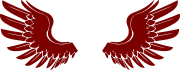 hawk wing clipart. Delighful Clipart Hawk Wings Clipart 1 Intended Wing A