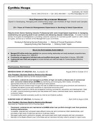 Commercial Finance Manager Sample Resume Bunch Ideas Of Resume Samples Program Finance Manager Fp A Devops 20