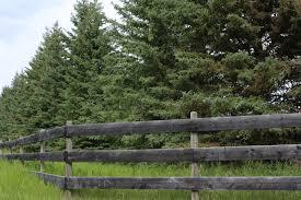 wooden farm fence. Spruce Tree Wooden Farm Fence W