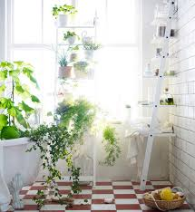 new from ikea a stepladder shelf for plants