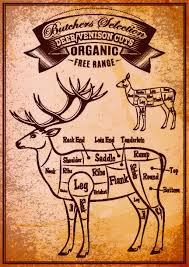 Deer Butcher Chart Venison Bison Wild Meat And Game Recipes Red Meat Lover