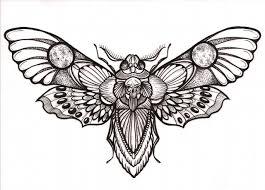 Awesome Deaths Head Hawk Moth Tattoo Design Tattoo Piercing